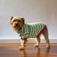 IMPERFECT  Blank Christmas Pajamas - DOG